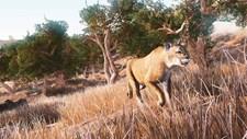 Hunting Simulator (EU) Screenshot 1