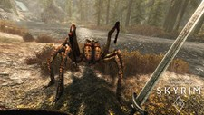 The Elder Scrolls V: Skyrim VR Screenshot 3