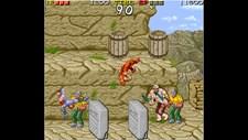 Arcade Archives Ninja Gaiden Screenshot 3