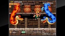 ACA Neo Geo: Spin Master Screenshot 5