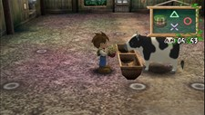Harvest Moon: A Wonderful Life Special Edition Screenshot 3