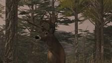 Deer Simulator Screenshot 5