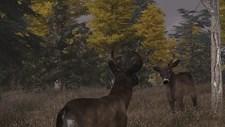 Deer Simulator Screenshot 4