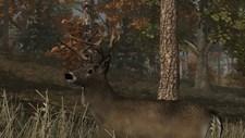 Deer Simulator Screenshot 1