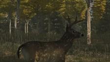Deer Simulator Screenshot 2