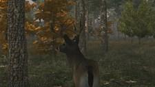Deer Simulator Screenshot 3