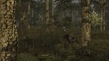 Wild Turkey Hunter Screenshot 1