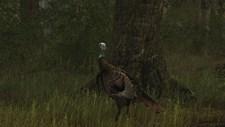 Wild Turkey Hunter Screenshot 8