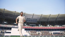 Ashes Cricket Screenshot 2
