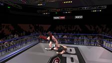 5 Star Wrestling: ReGenesis Screenshot 3