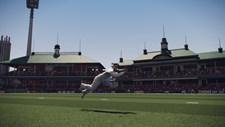 Don Bradman Cricket Screenshot 5