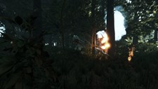 The Forest Screenshot 2