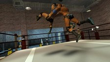 5 Star Wrestling Screenshot 8
