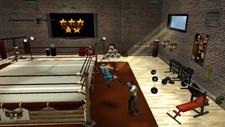 5 Star Wrestling Screenshot 4