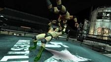 5 Star Wrestling Screenshot 2