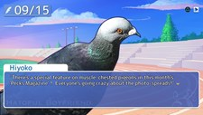Hatoful Boyfriend Screenshot 2