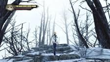 Anima: Gate of Memories Screenshot 7