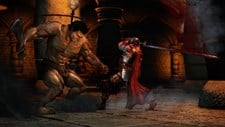 Berserk and the Band of the Hawk (Asia) Screenshot 6