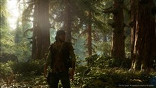 Days Gone Screenshot 5