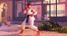 Street Fighter V Screenshot 7