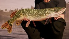 Fishing Sim World: Pro Tour Screenshot 3
