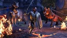 The Elder Scrolls Online: Tamriel Unlimited Screenshot 5
